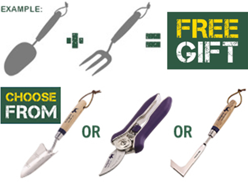 buy 2 and choose a free gift